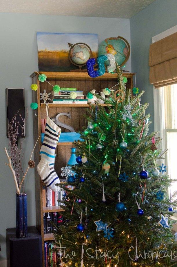 camera and christmas 010