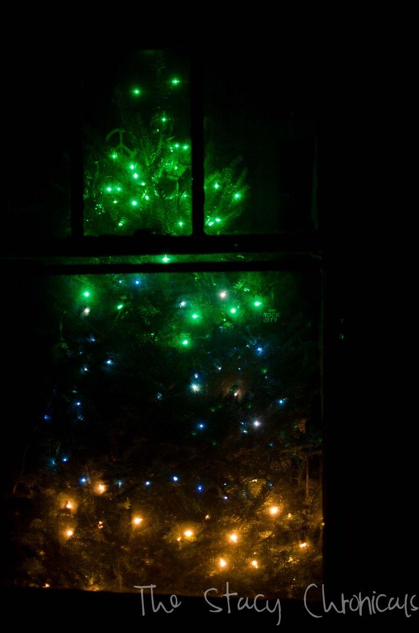 Christmas 2012 057