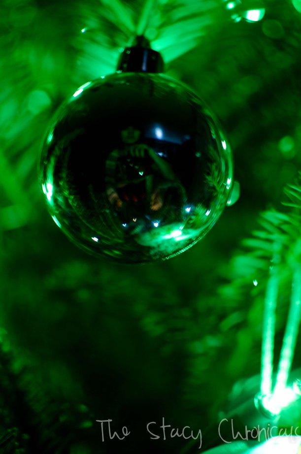 Christmas 2012 066