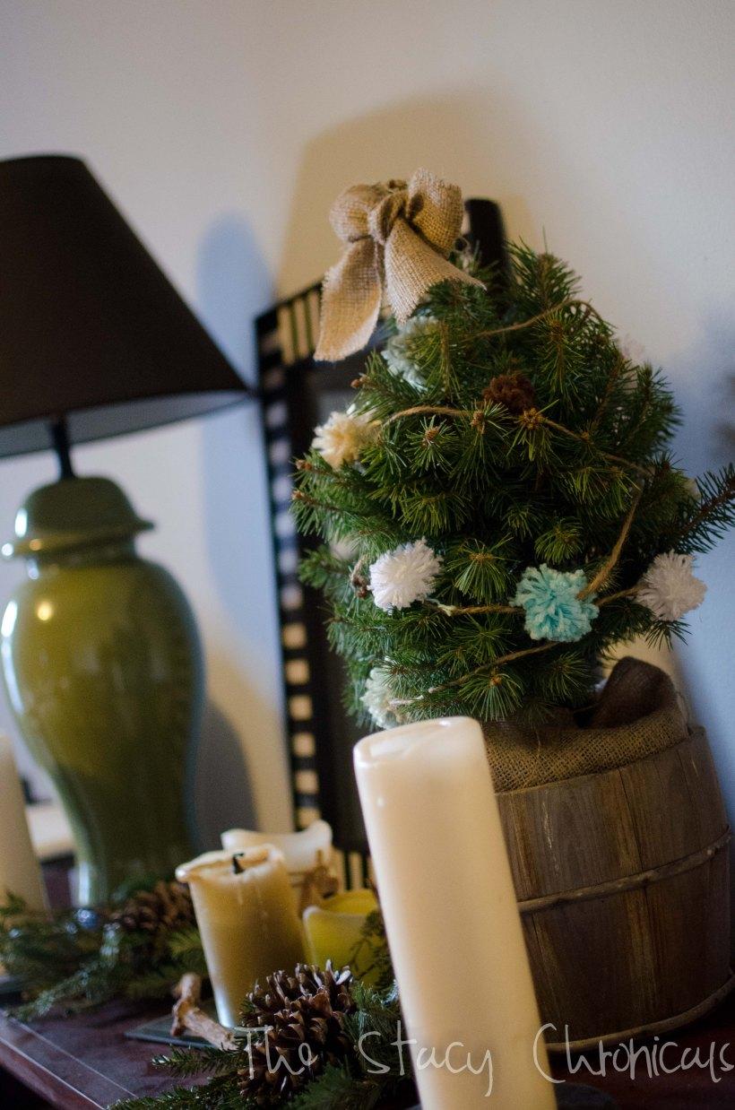 Christmas 2012 084