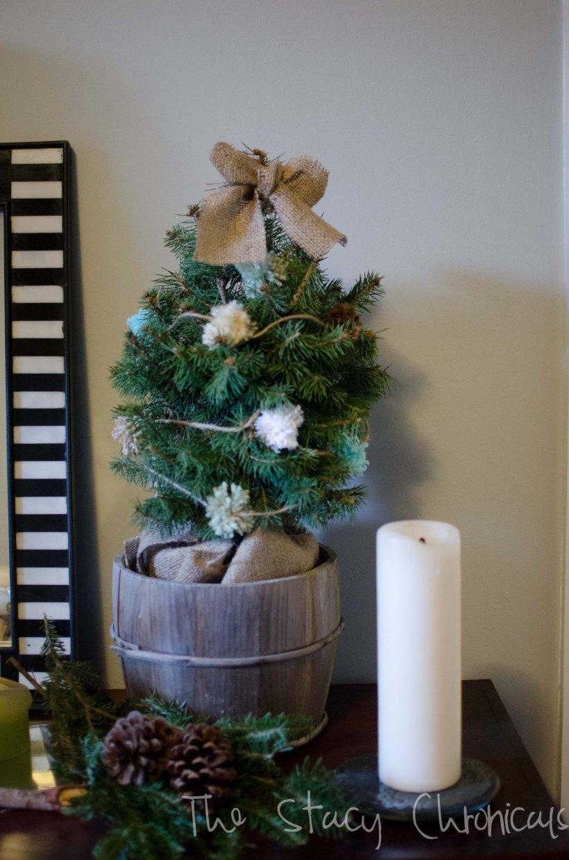 Christmas 2012 088
