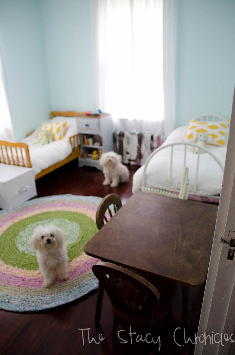 nursery and dogs 006