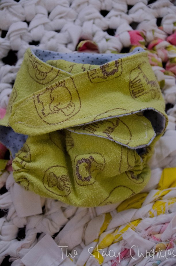 Cloth diapering 011