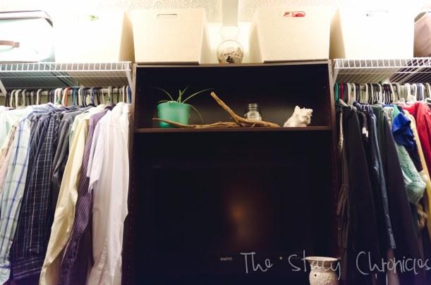 closet shelves 007