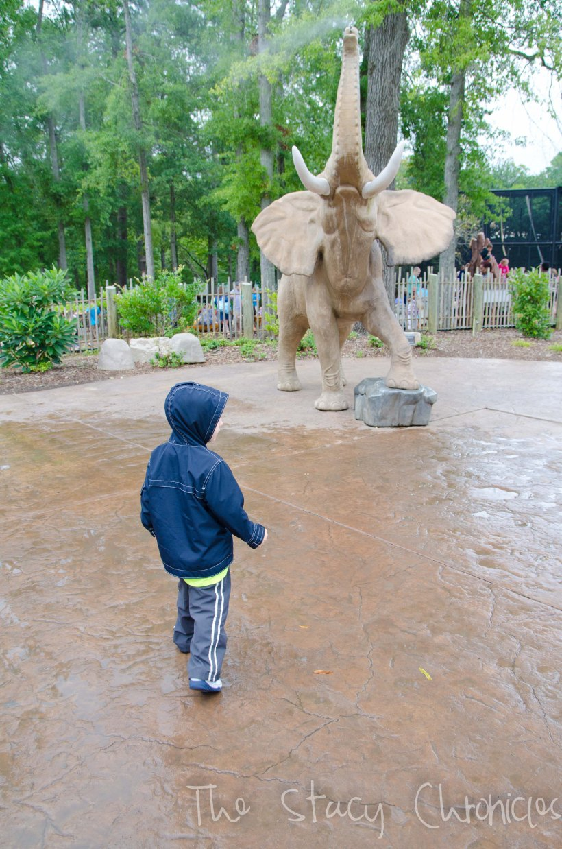 Day at the Zoo 110
