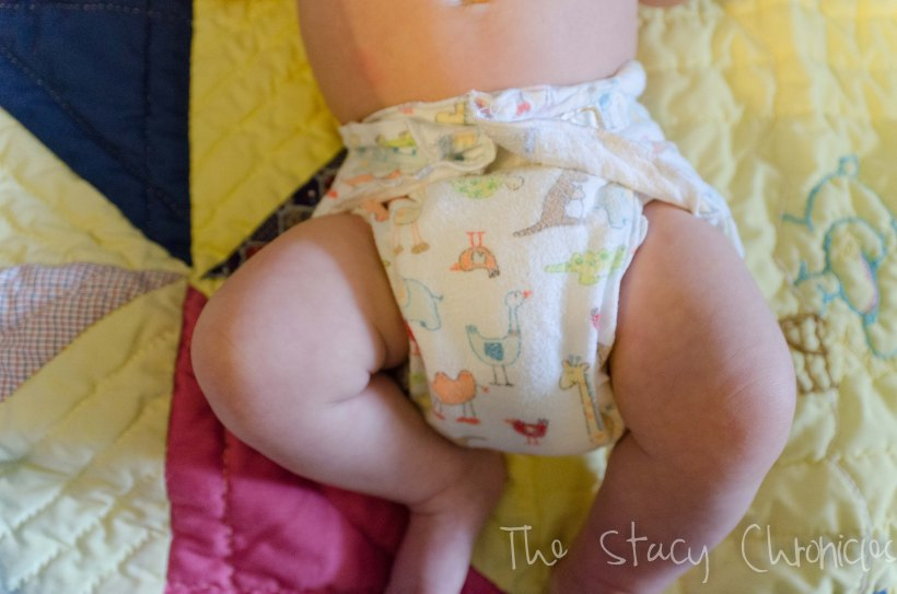 Cloth Diapering 027