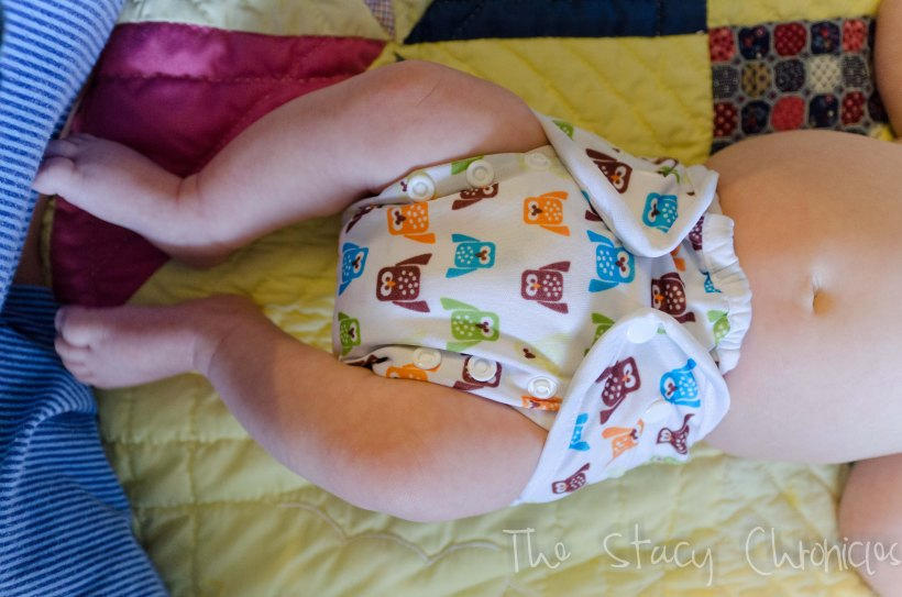 Cloth Diapering 037