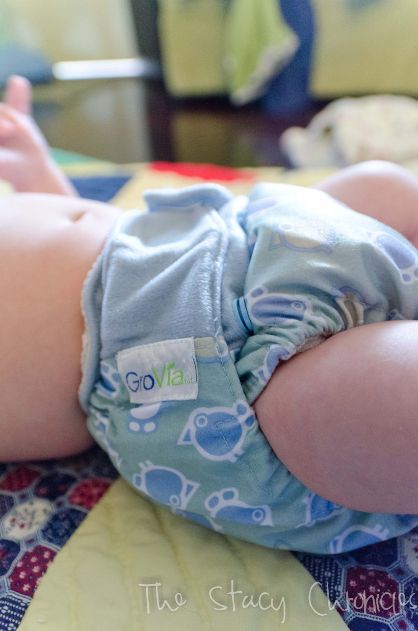 Cloth Diapering 041