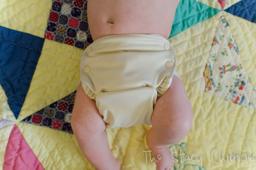 Cloth Diapering 046